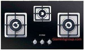 Bếp ga âm Fotile GFG86302