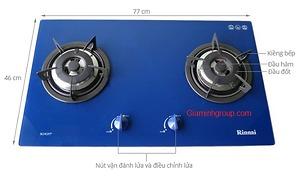 Bếp gas âm Rinnai RVB-2G-SCH(BL)